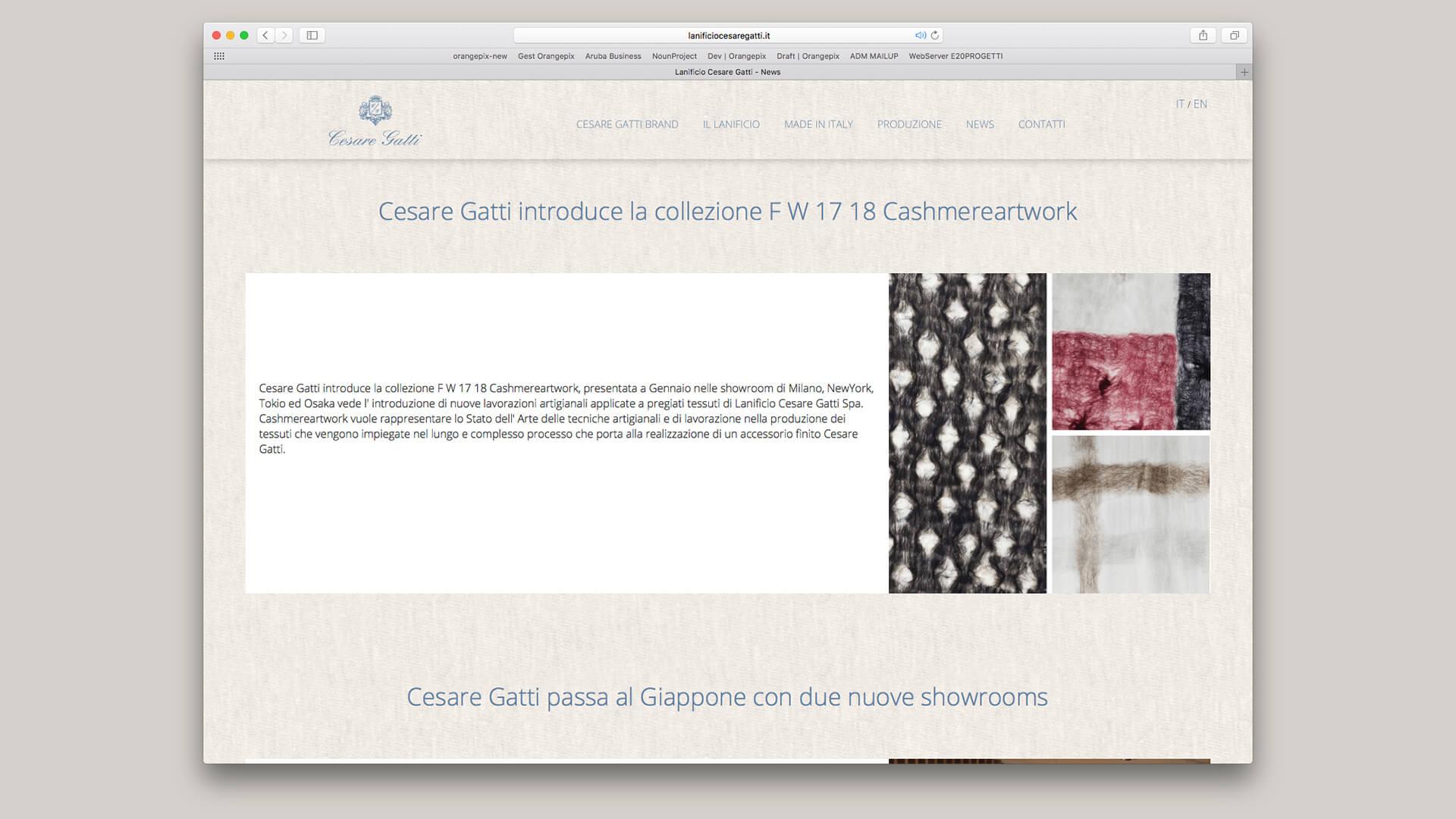 Sito Web di Cesare Gatti realizzato da OrangePix a Biella